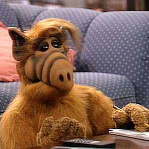 An <i>ALF</i> Movie is Underway