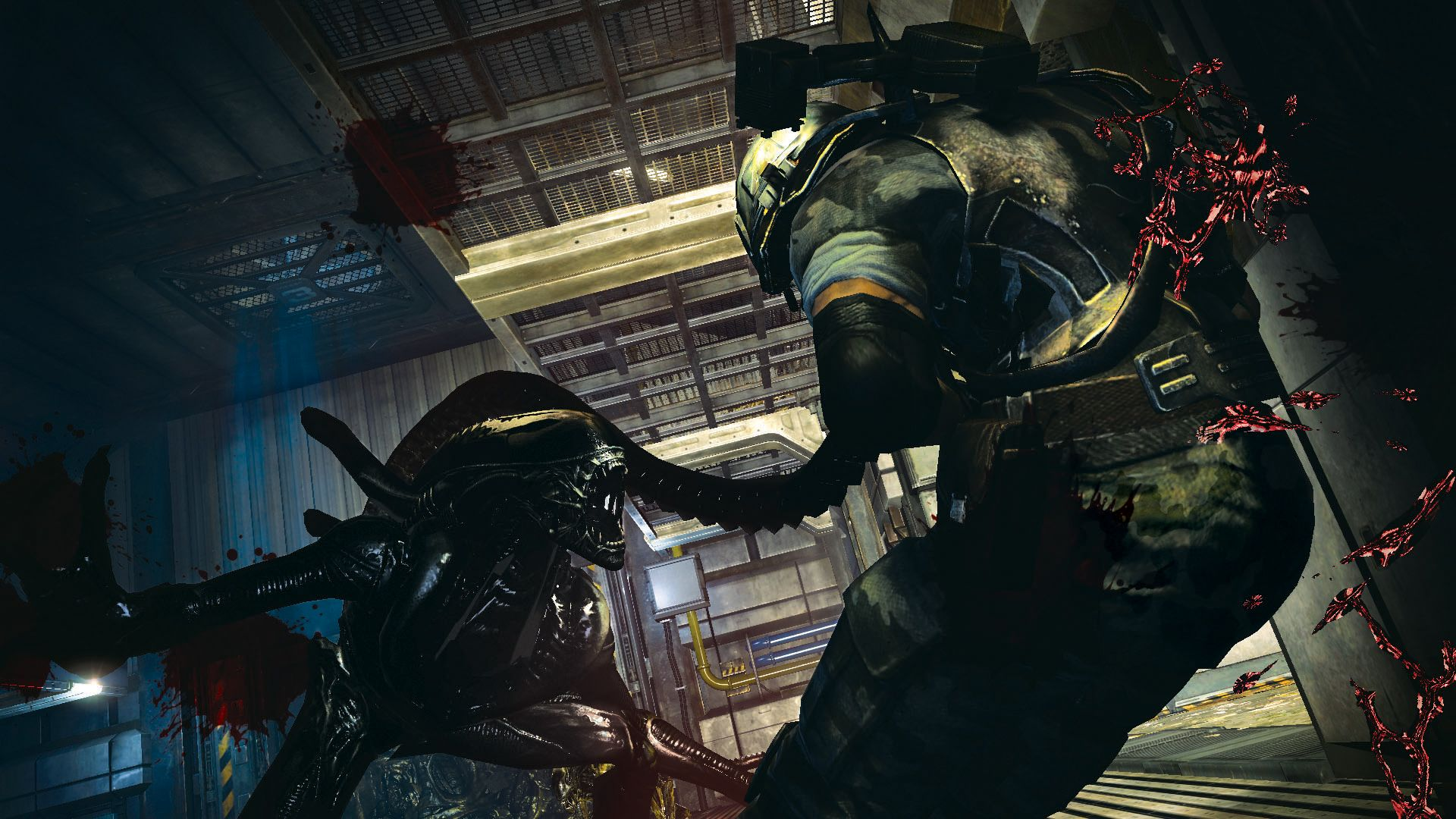 Aliens: colonial marines was developed by gearbox software and