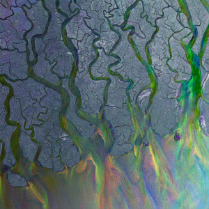 Alt-J Wins Mercury Prize for <i>An Awesome Wave</i>