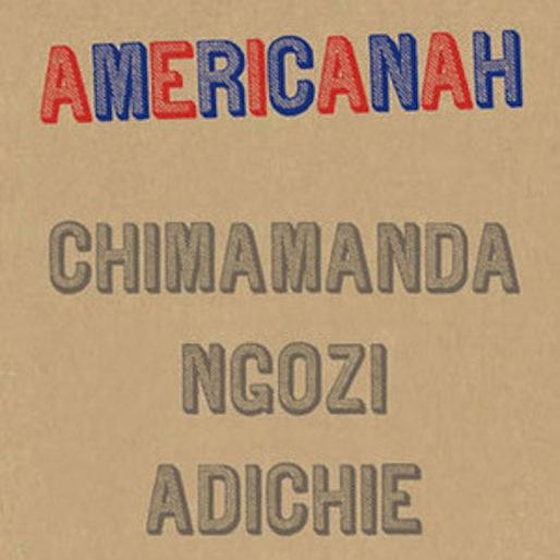<i>Selma</i>'s David Oyelowo Joins Lupita Nyong'o In Her <i>Americanah</i> Adaptation