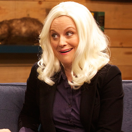 Amy Poehler to Guest in Upcoming Episode of <i>The Simpsons</i>