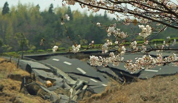 tsunami_and_the_cherry_blossom_filmstill5__120125071140.jpg