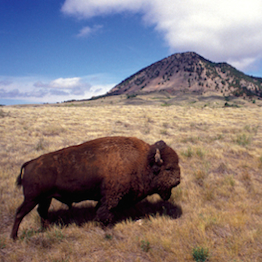10 Great State Parks in the Great Plains