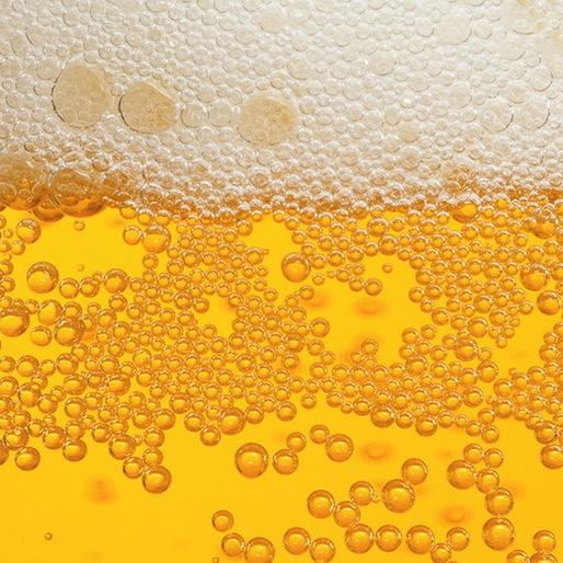 Breaking News: Beer Has Calories!