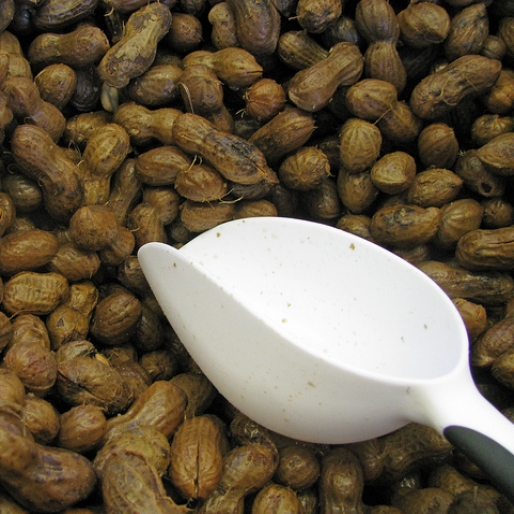 6 Reasons Why You Should Try Boiled Peanuts