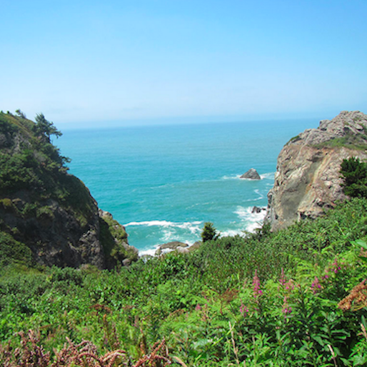 10 Great State Parks in Northern California