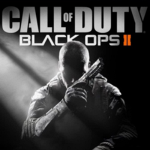 &lt;i&gt;Call of Duty: Black Ops II&lt;/i&gt; Grossed Over $500M in First Day