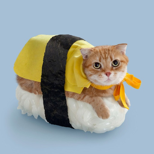 "Poster and Postcard Series ""Neko-Sushi"" Imagines Cats as Sushi"