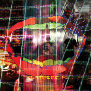 Animal Collective Unveil New Cover Art for <i>Centipede Hz</i>