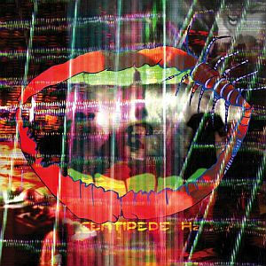 Stream Animal Collective's &lt;i&gt;Centipede Hz&lt;/I&gt;