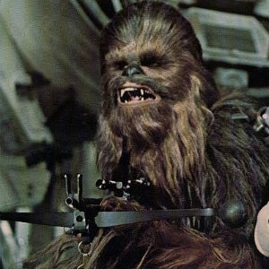 Biopic About Chewbacca Actor Peter Mayhew in the Works