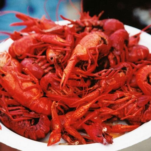 Cue the Crawfish: 4 Ways to Savor the Crustacean of the Season