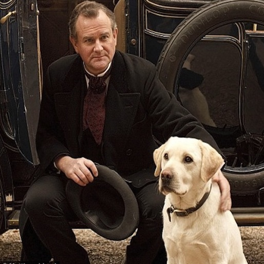 <i>Downton Abbey</i> Dog Isis Might Be Off The Show Due To Unfortunate Name Coincidence