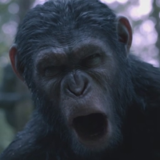 Watch an Extended Clip from <i>Dawn of the Planet of the Apes</i>
