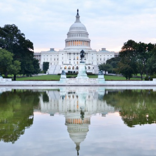 10 Awesome Airbnbs in Washington, D.C. for $100 or Less