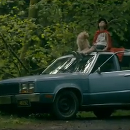 """Watch The Shins' Video for """"It's Only Life"""""""