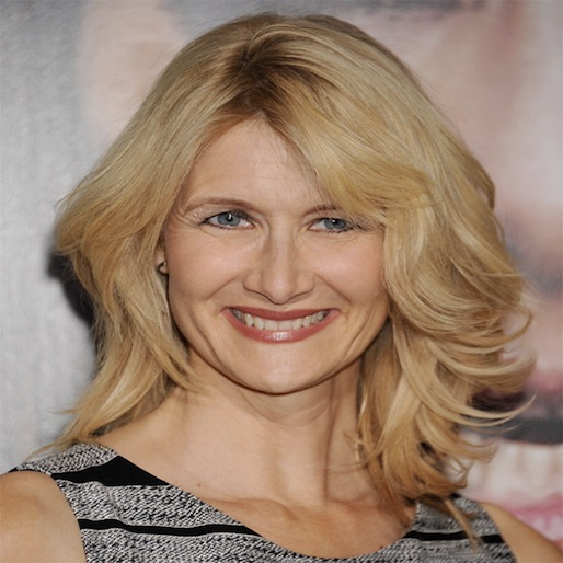 Judd Apatow and Laura Dern Teaming Up For Female Football Comedy
