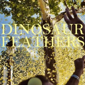 Dinosaur Feathers: <i>Whistle Tips</i>