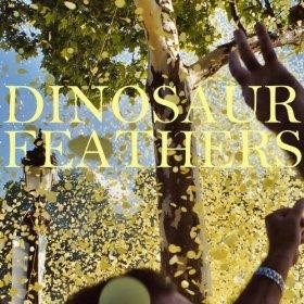 Dinosaur Feathers: <i>Whistle Tips</i>