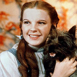 CBS Developing <i>Wizard of Oz</i>-Based Medical Drama
