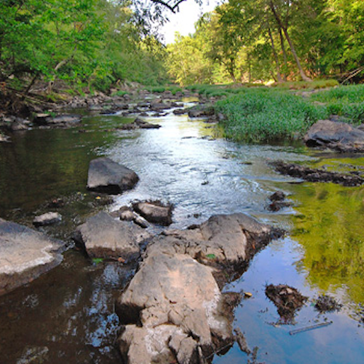 10 Great State Parks in the Mid-Atlantic Region