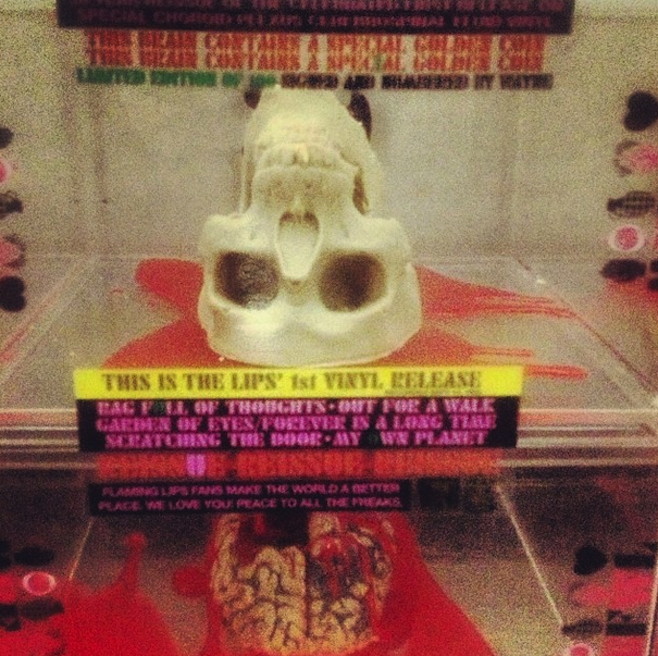 Wayne Coyne to Bring Gourmet Chocolate Skulls to U.S. Record Shops