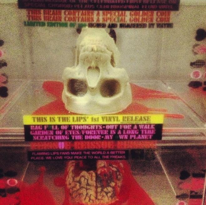 Wayne Coyne to Bring Gourmet Chocolate Skulls to U.S. Record Shops