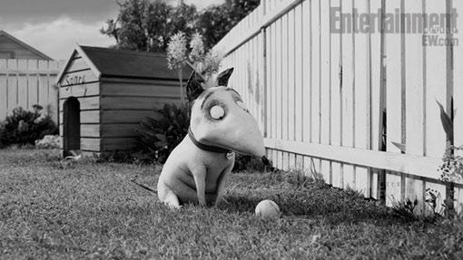 Frankenweenie Dog