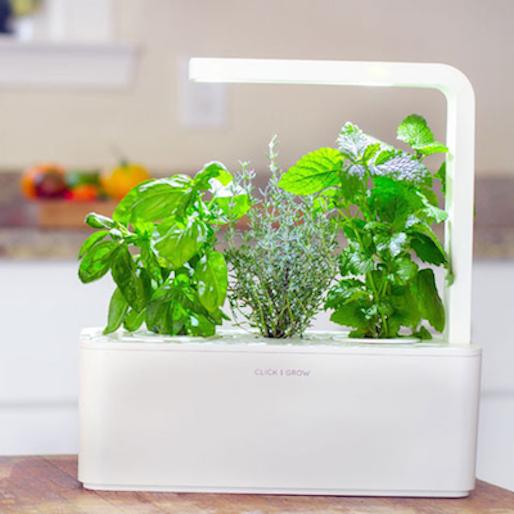 10 Technological Innovations for Gardeners