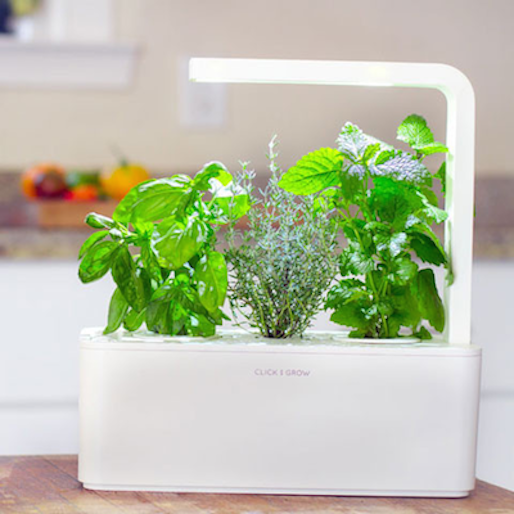 10 Technological Innovations for Gardeners