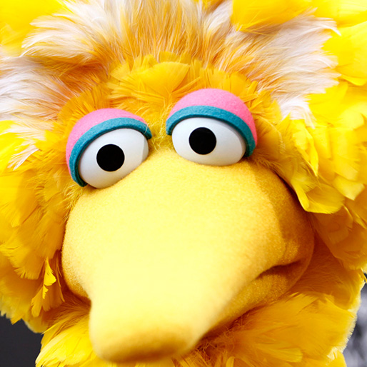<i>I Am Big Bird: The Caroll Spinney Story</i>
