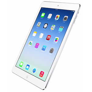 Poll Shows iPad at Top of Black Friday Sales