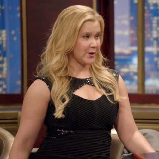 "<em>Inside Amy Schumer</em> Review: ""I'm Sorry"""