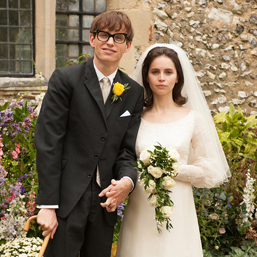 <i>The Theory of Everything</i>