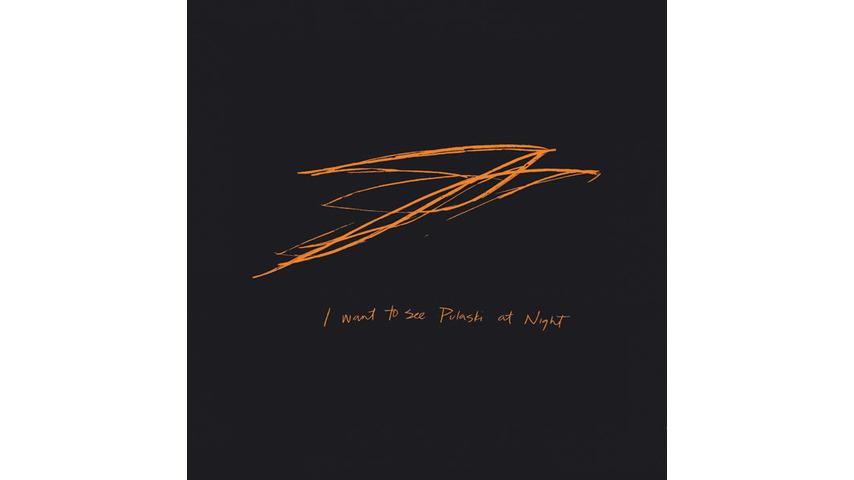 Andrew Bird: <i>I Want to See Pulaski at Night</i>