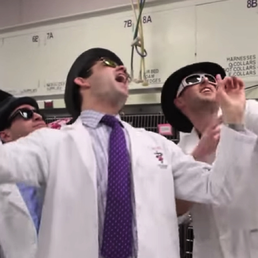 "Watch the Men of Cornell's Vet School ""Bro Out"" in ""Uptown Funk"" Parody"