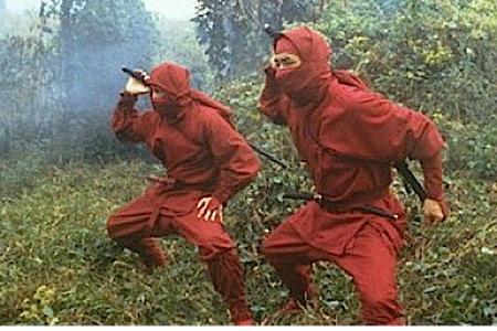 17-100-Best-B-Movies-enter-the-ninja.jpg