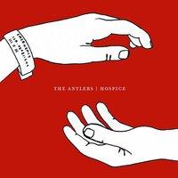 the_antlers.jpg