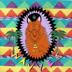 wavves_king_of_the_beach_album_cover.jpg
