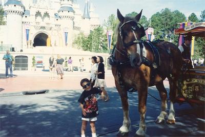 John Michael R. Horse jpg