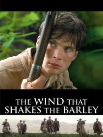 wind-shakes-barley.jpg
