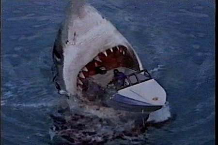 39-100-Best-B-Movies-shark-attack-3.jpg