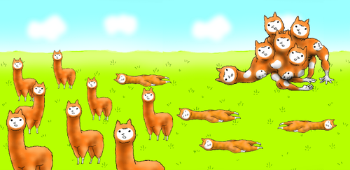 alpaca evolution.png