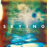 8. The Horrors - Skying