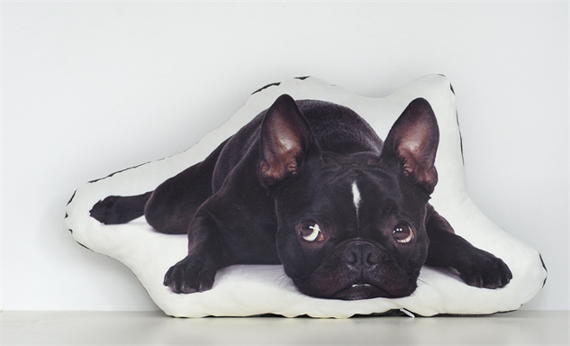 Pet-Shaped Pillows Allowed on the Couch :: Style :: Galleries :: Paste
