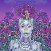 11. Erykah Badu: New Amerykah Part Two (Return of the Ankh)