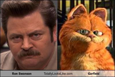 cats-that-look-like-ron-swanson photo_30727_0-20