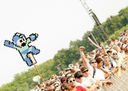 Lolla Crowd