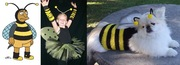 The Bumblebee guy's costume, great for kids (sweetiepietutus, $38.50) and, um, pets (SturmDM, $28.00)