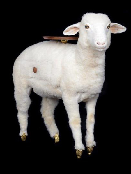 taxidermy-sheep-cabinet photo_2111_0-9
